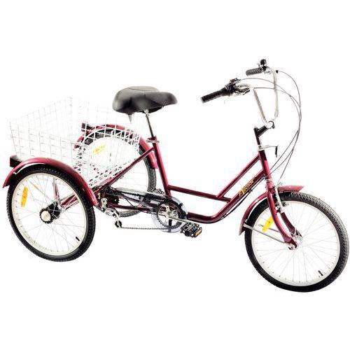 Triciclo - Capacidad 45 kg